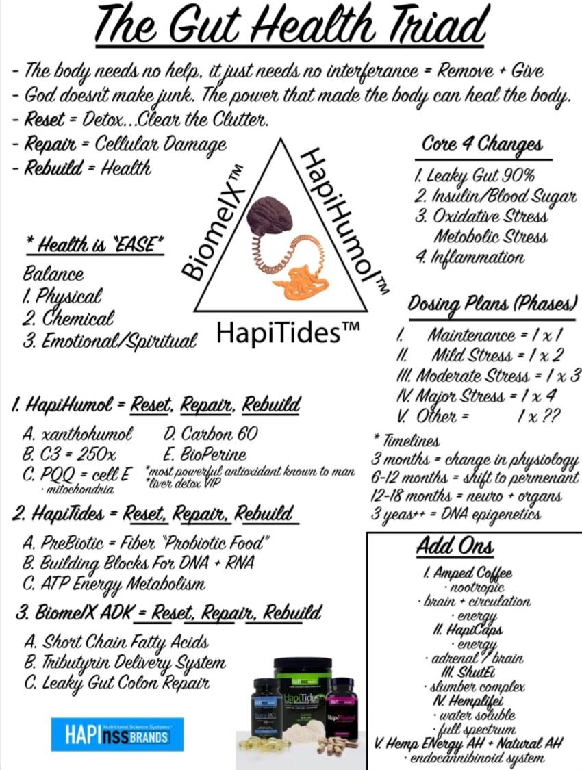 amplifei gut health chart